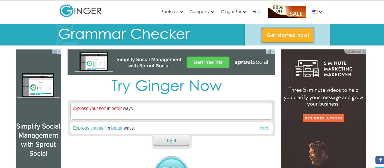 ginger grammar check